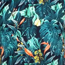 AO Jungle