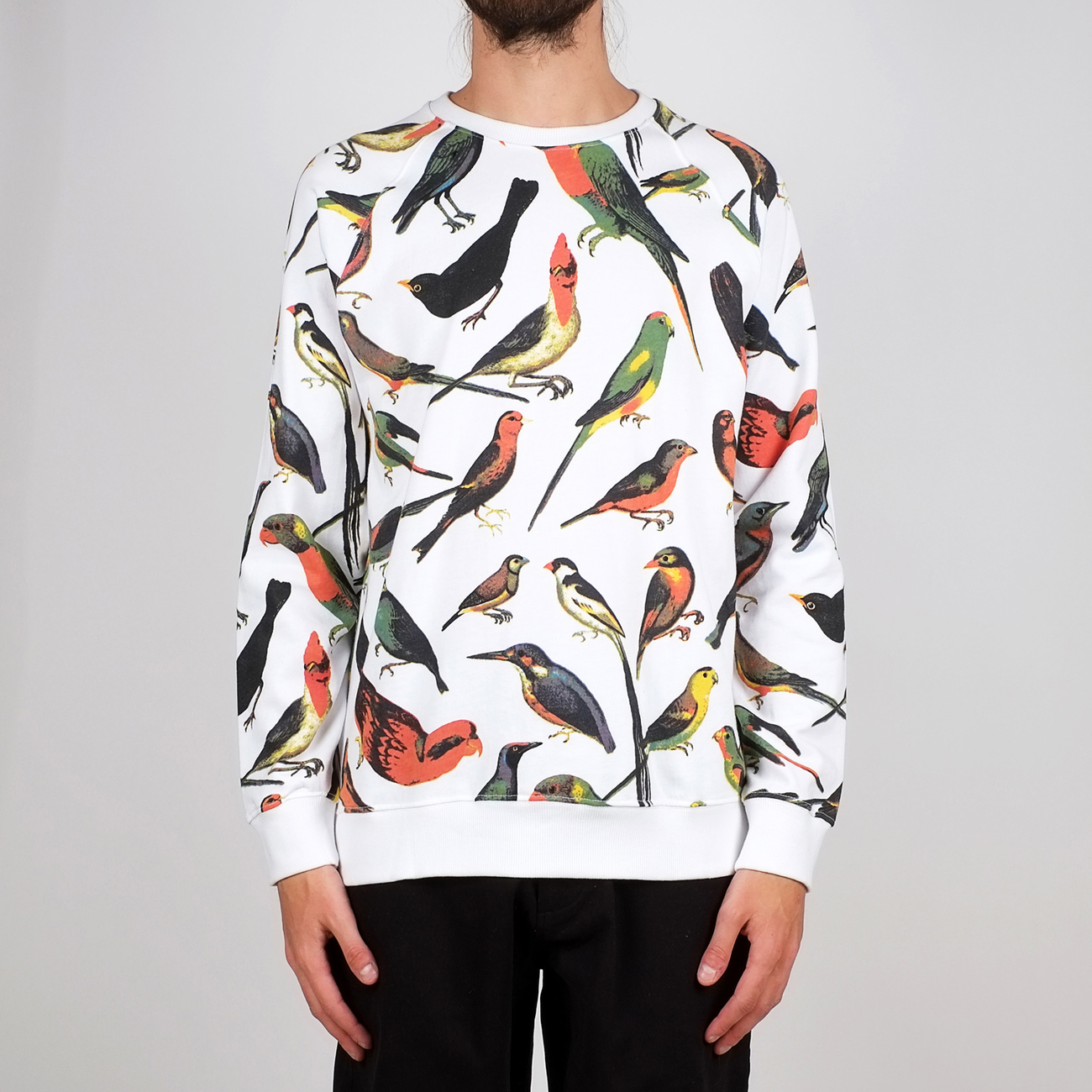 Sweatshirt Malmoe Birds