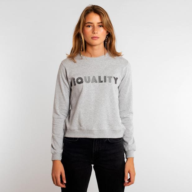 Tröja Ystad Equality Grå