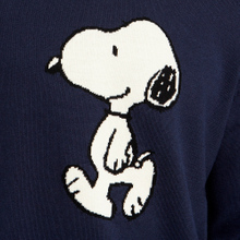 Sweater Arendal Snoopy Navy